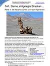 FernExpress: Reisebericht Chile und Argentinien